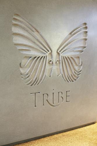 Tribe_2.jpg