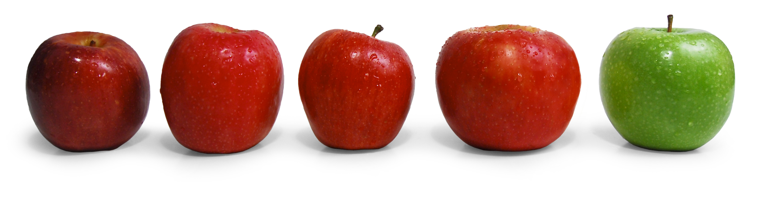 auvil-fruit-apples.png