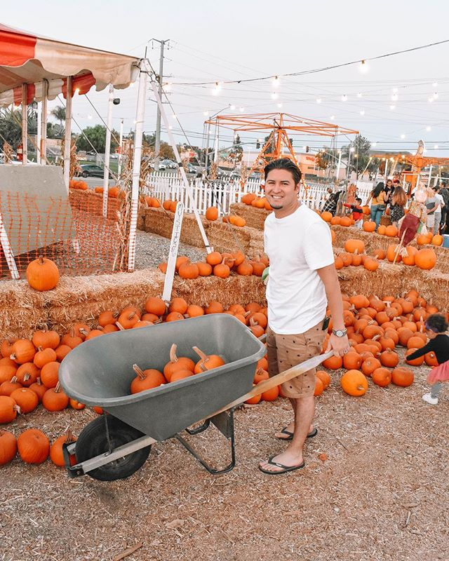 I'm ready, I'm ready, I'm ready!✖️🎃 . . . . . . #sunrise #photography, #sundayfunday #motivated #l4l, #f4f, #follow, #iger, #igdaily, #igers, #webstagram #pumpkin , #sunday #picoftheday, #photooftheday, #selfie, #goodvibes, #photo, #me, #life #blogger #quote #believe, #focus #quotes, #instagood #motivation