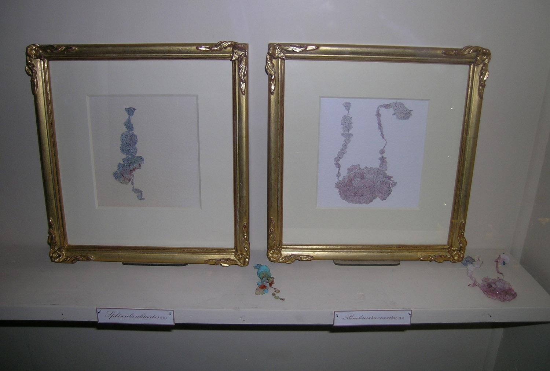 Harold Thomas Collection