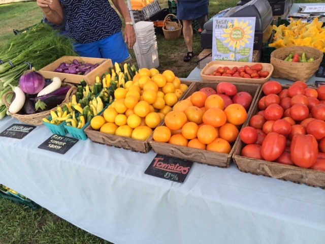 Farmer's Market at Casey Farm
