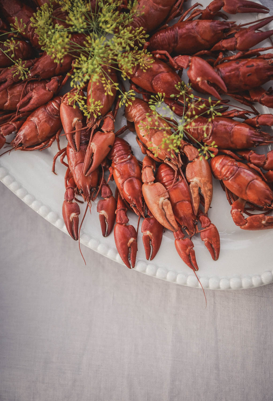 Crayfish Party on Gotland Foto Emily Dahl-11.jpg