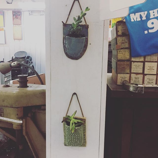 Reason 1,000 I love being in a makerspace. I wanted little holders for plants and all I had to do is walk upstairs and ask a fellow maker. Thank you at @p.spencer.davis for making these and being part of @madjaxmuncie #makerspace #makers #plants #succulents #handmade #shoplocal #shoplife #worktogether
