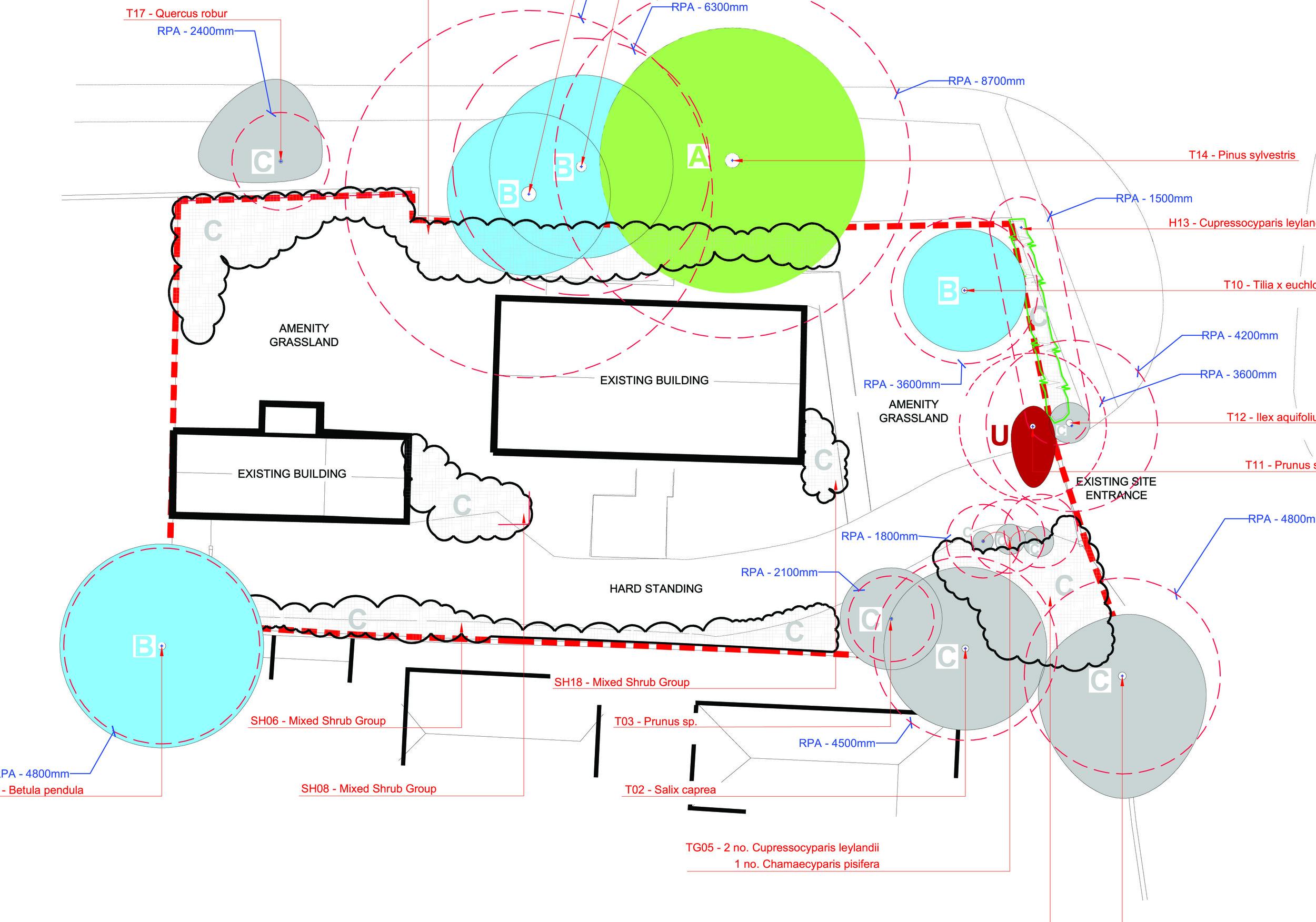 LLD792.01_TheMartlets.TreeConstraintsPlan.Rev01.09.01.15.jpg
