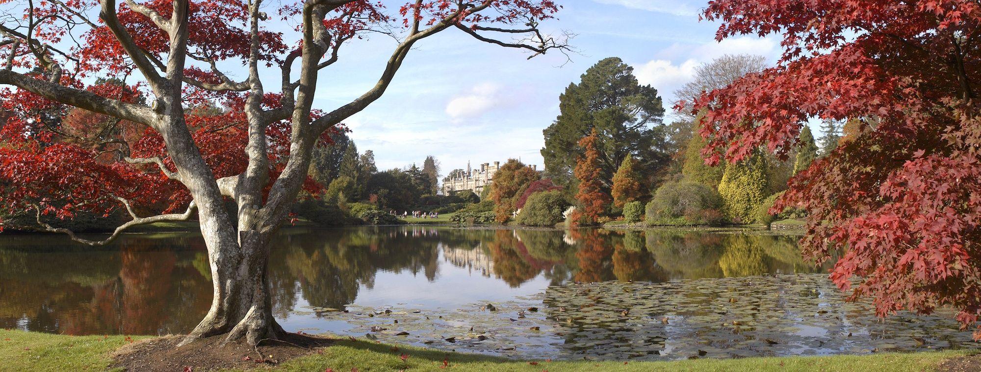 iStock-186836668-Sheffield-Park-and-Gardens.jpg