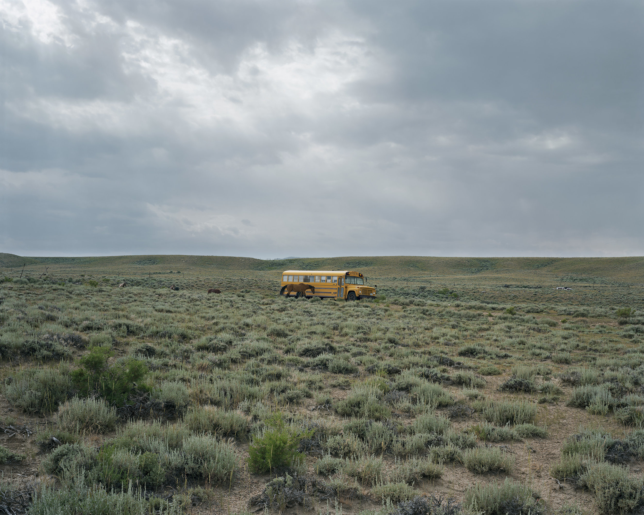Photos by Alec Soth