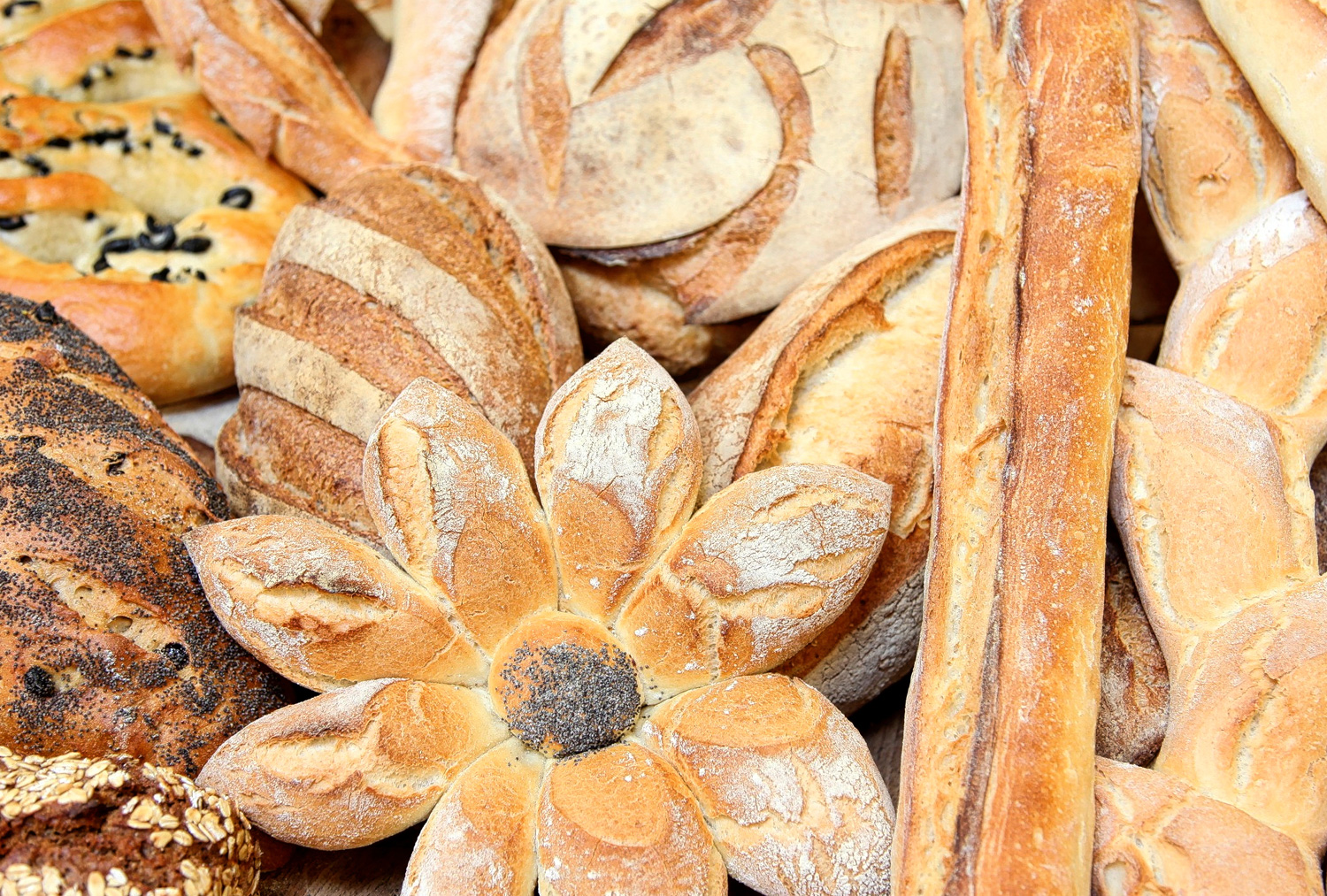 boulangerie-jade-products-breads-selection.jpg