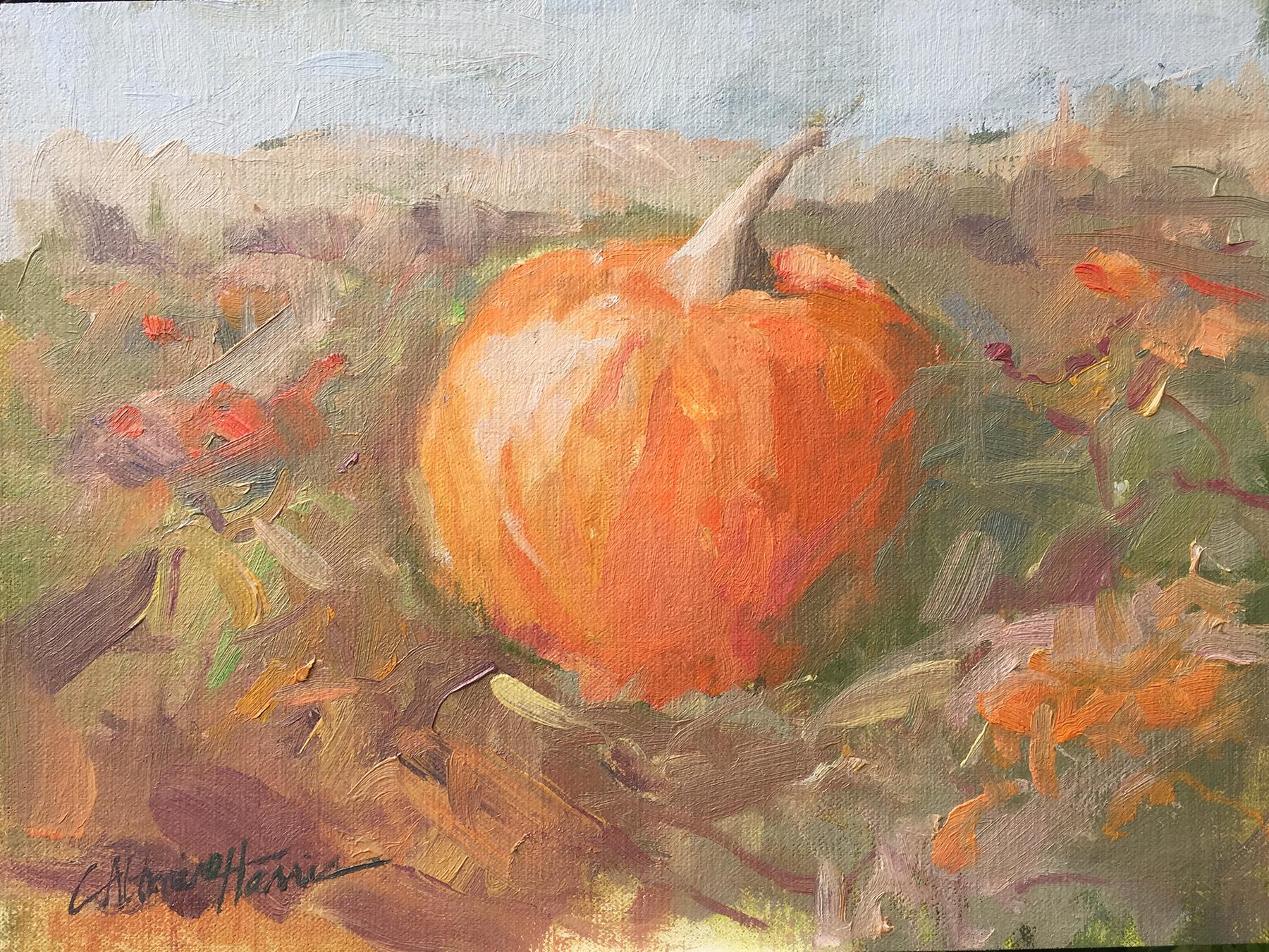 The Pumpkin Patch*