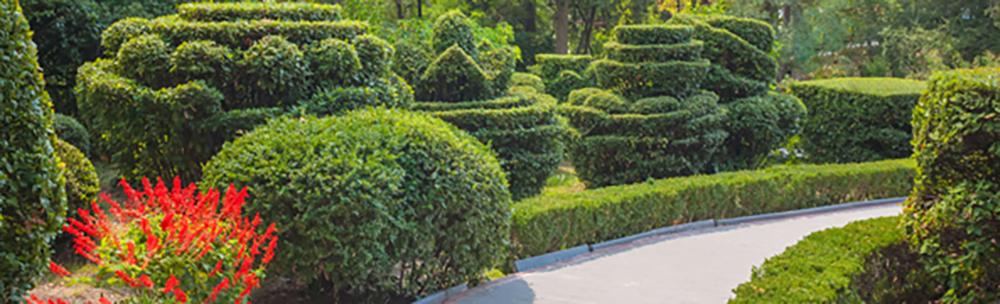gabino-lawn-landscaping-landscape-design-callout-11-03-15.jpg
