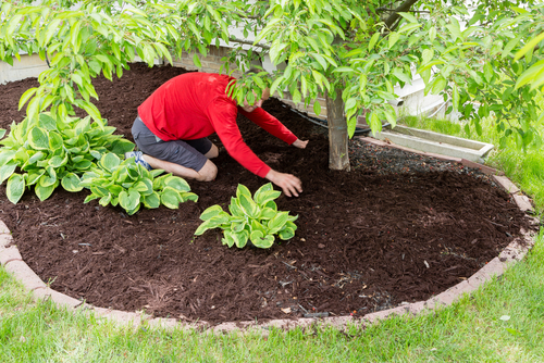 landscaping services OKC