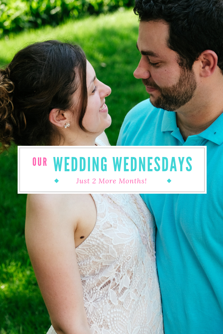 Just 2 more months until the wedding! This month we're talking Bridal Showers, Dress Fittings, and crazy emotions. Click for the full post!