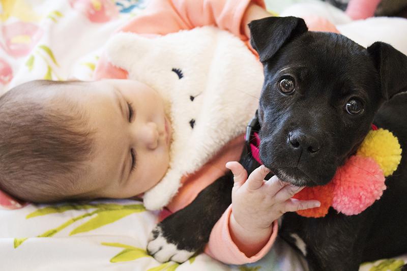 Lexie Baby 9.jpg