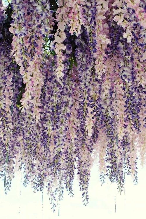 hanging_flower_garden_Dior.jpg