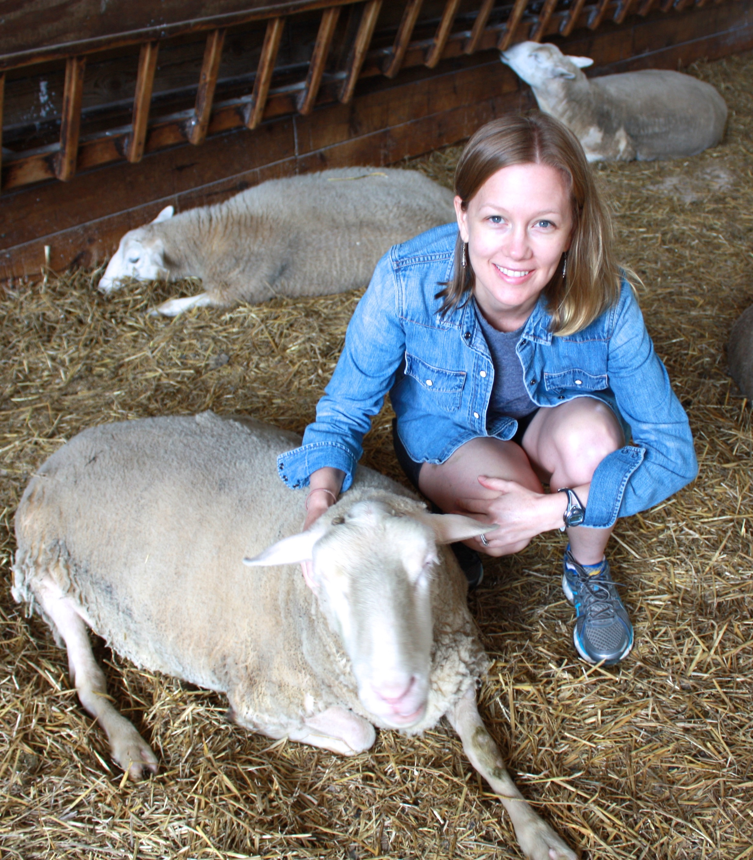 Jane & Cash the sheep