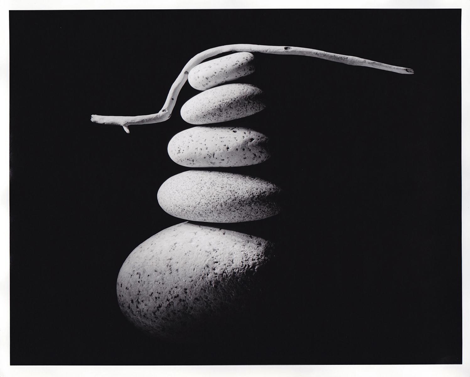 David Piemonte Photography