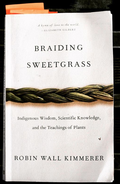 Braiding Sweetgrass  by Robin Wall Kimmerer.  Ecology is home and home is a ballerina on a seesaw dancing the world into being while listening to the eeks and creaks of bird beaks and full creeks, a world alive despite our violations. Humans, we're the new kids on the evolutionary block, and what we seek is the long view: to learn the dance of the give-and-take, that we don't own her or control her but are of her, a planet that feeds us daily. So we feed her back, slowing and listening and celebrating a world that sees us, sniffs us, hears us, and lest we forget this reciprocity, well that's where ceremony helps: dance and poetry and science and music teaching us to live into cultures of gratitude, reminders that we're in this swirl of belonging together and that the world calls upon our gifts right now to sustain life, as squirrels carry seed and algae nestles lichen and pecans hold council and cedars teach resilience. Go afield and view others not as inert bundled burps but as life that leaps and flies and swims and burrows into their own niches on behalf of the whole, a balanced exchange from which we all flourish. Go afield. Listen. Bring gifts.