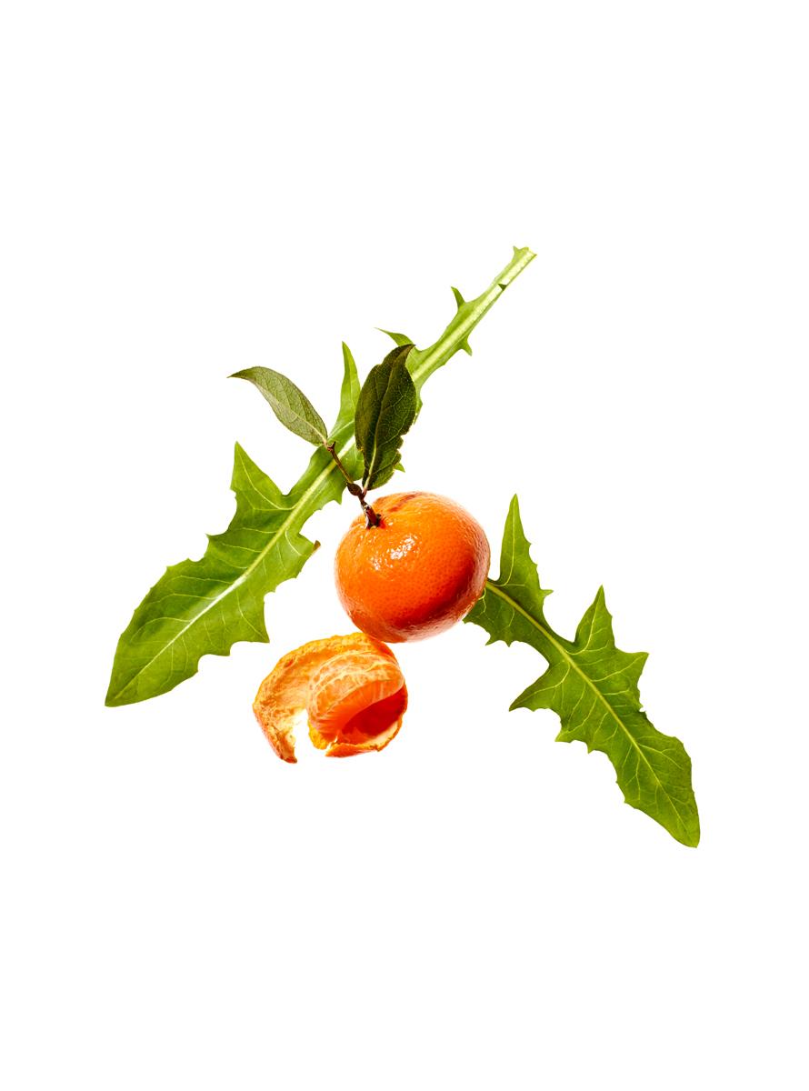clementine_216.jpg