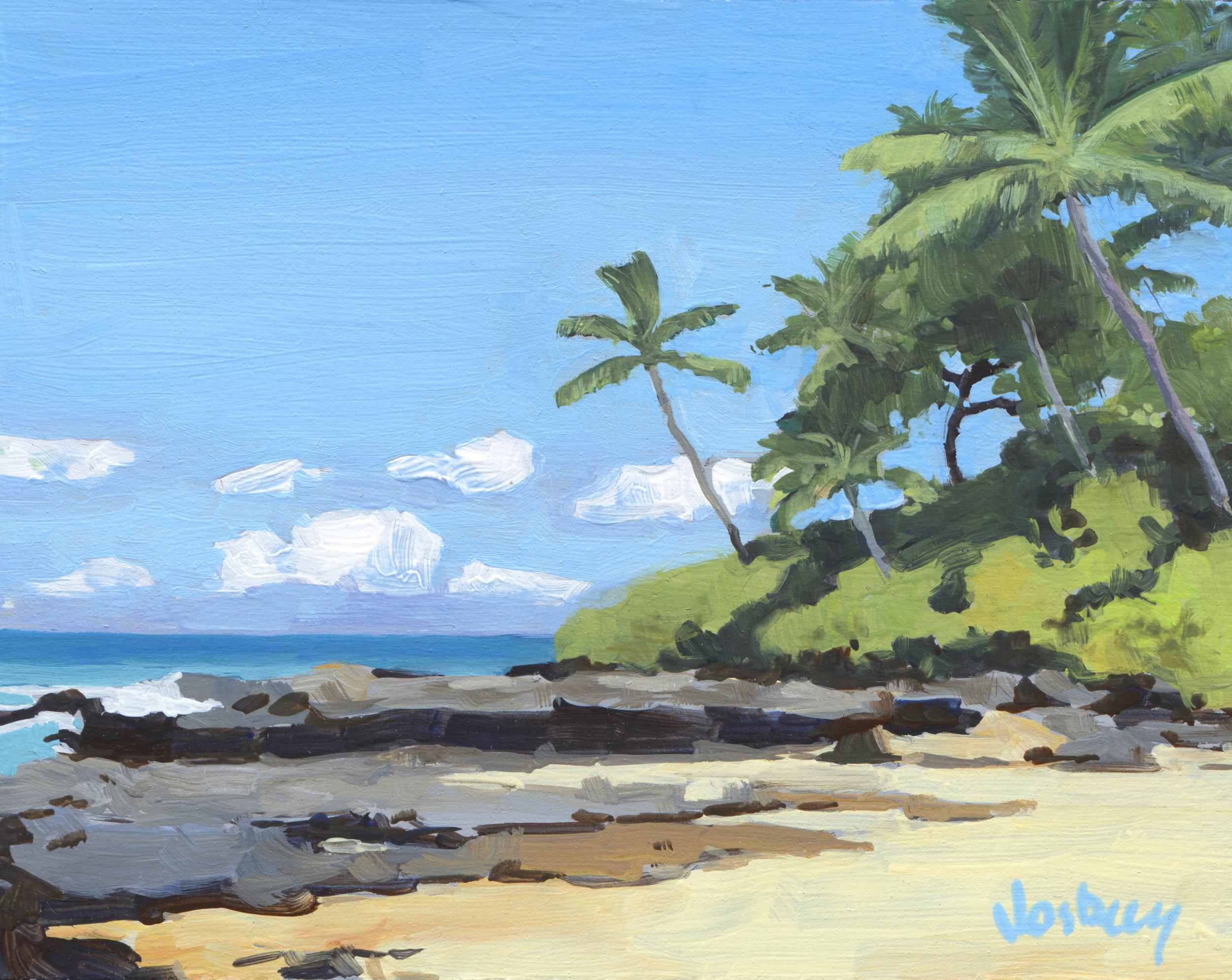 Hidden Beach, Maui