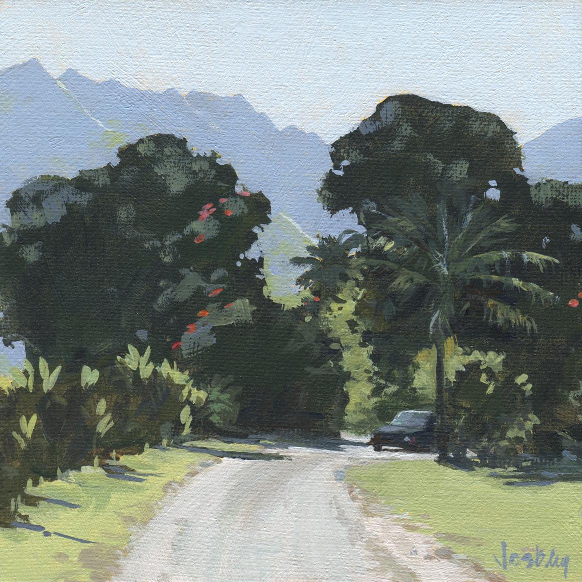 Hanalei Road. Kauai