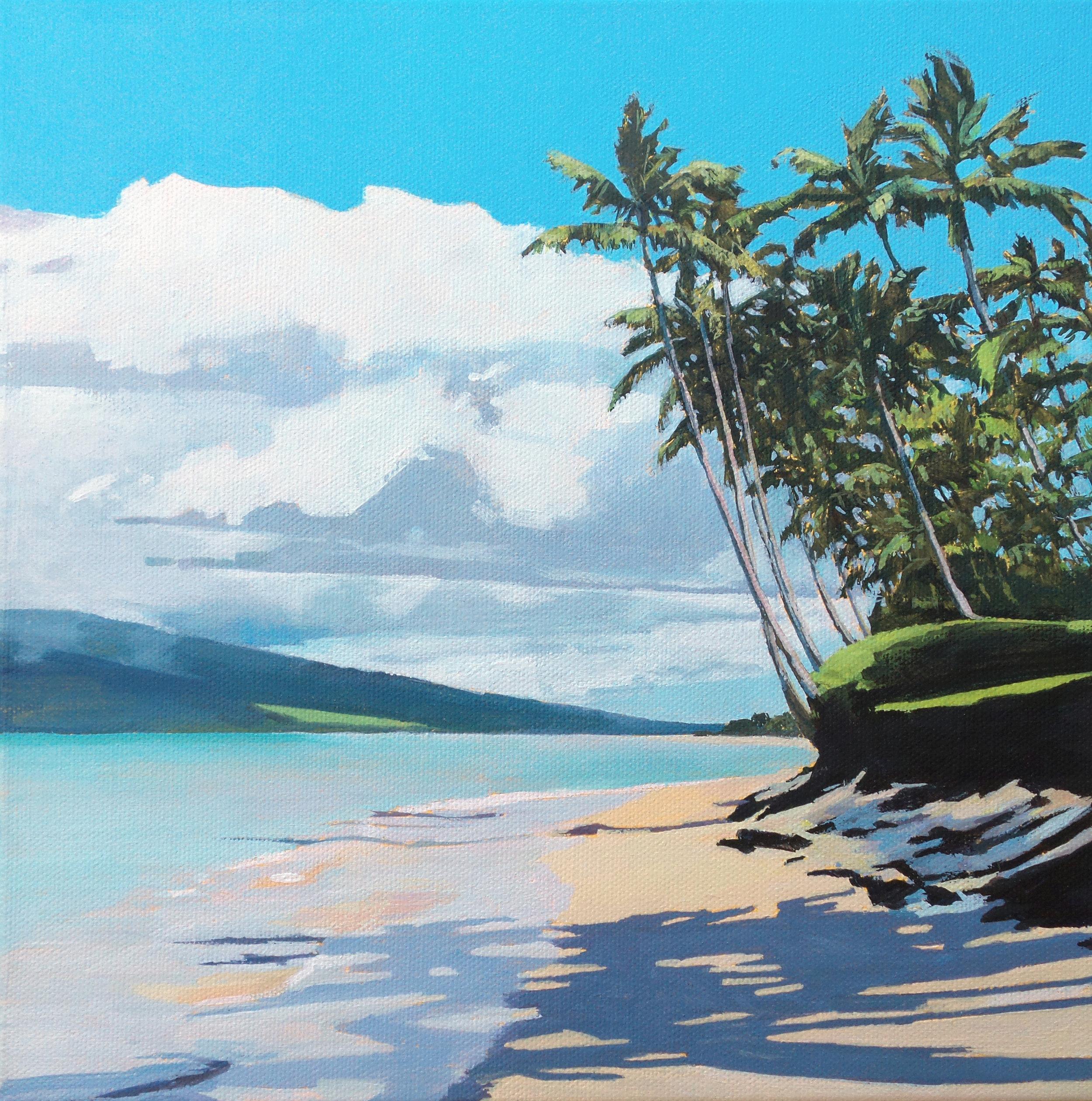 Kihei Morning Palm Shadows, Maui