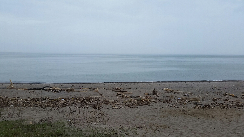 Beach on Erie