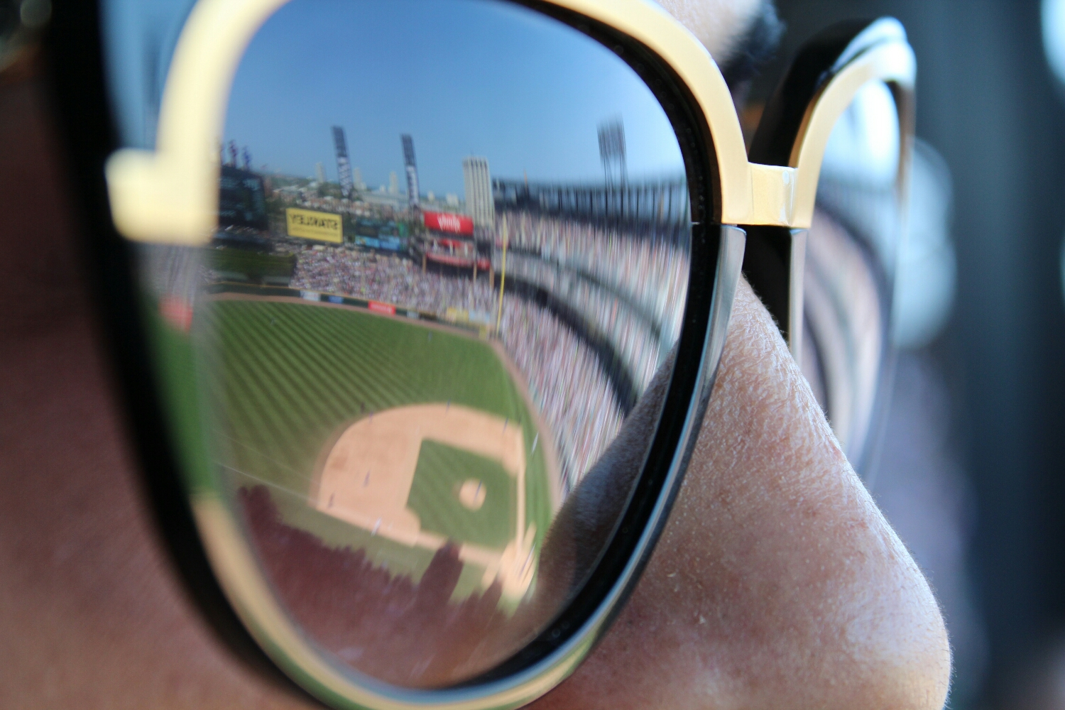 View of the Sox