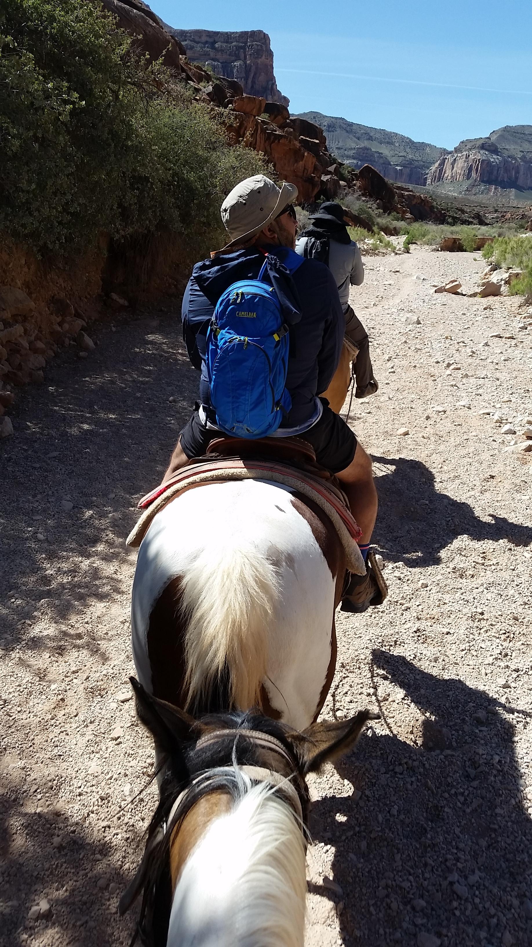 Horseback Riding Havasupai Reservation