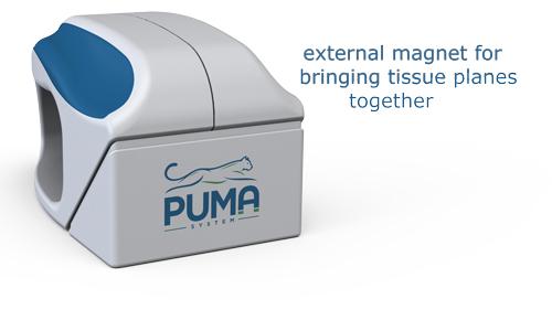 puma-explained-resize.jpg