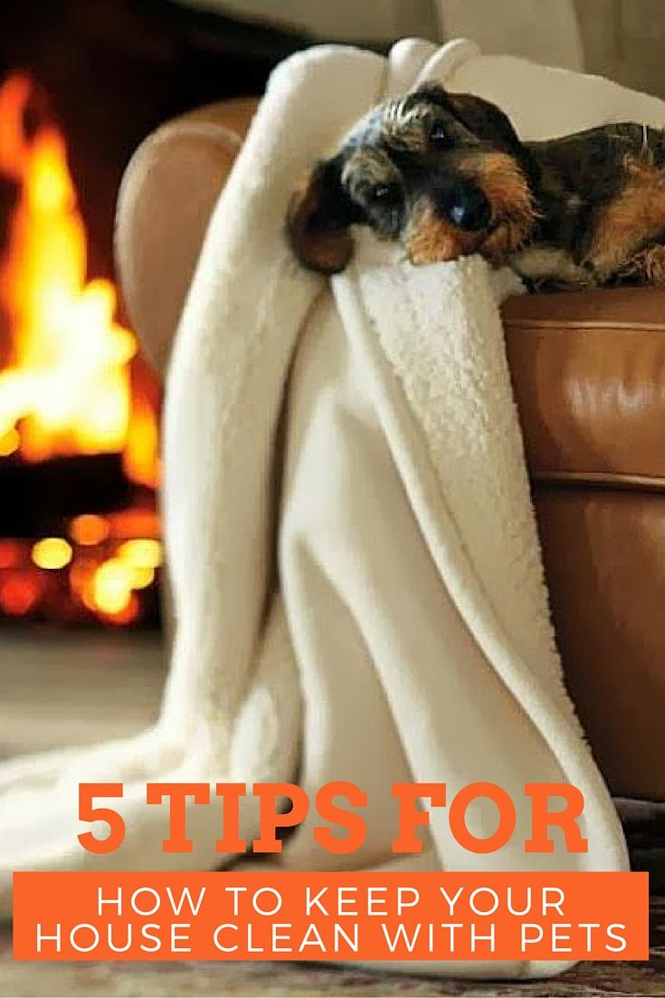 jillornelas.com/living-with-pets.jpg