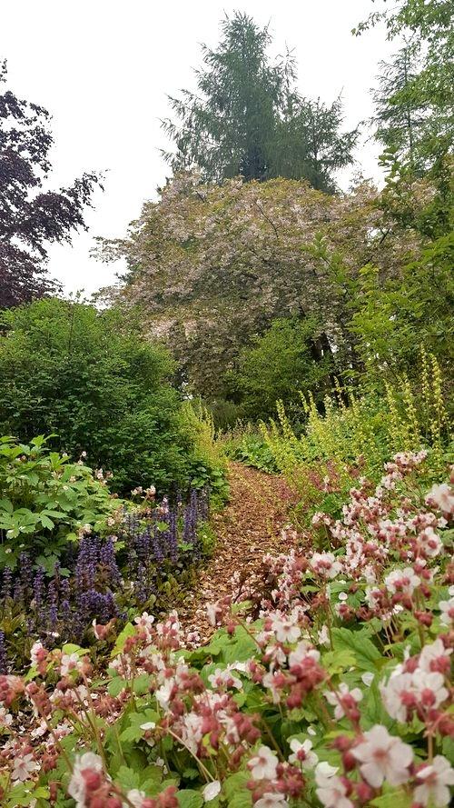 woodlandgarden_2500.jpg