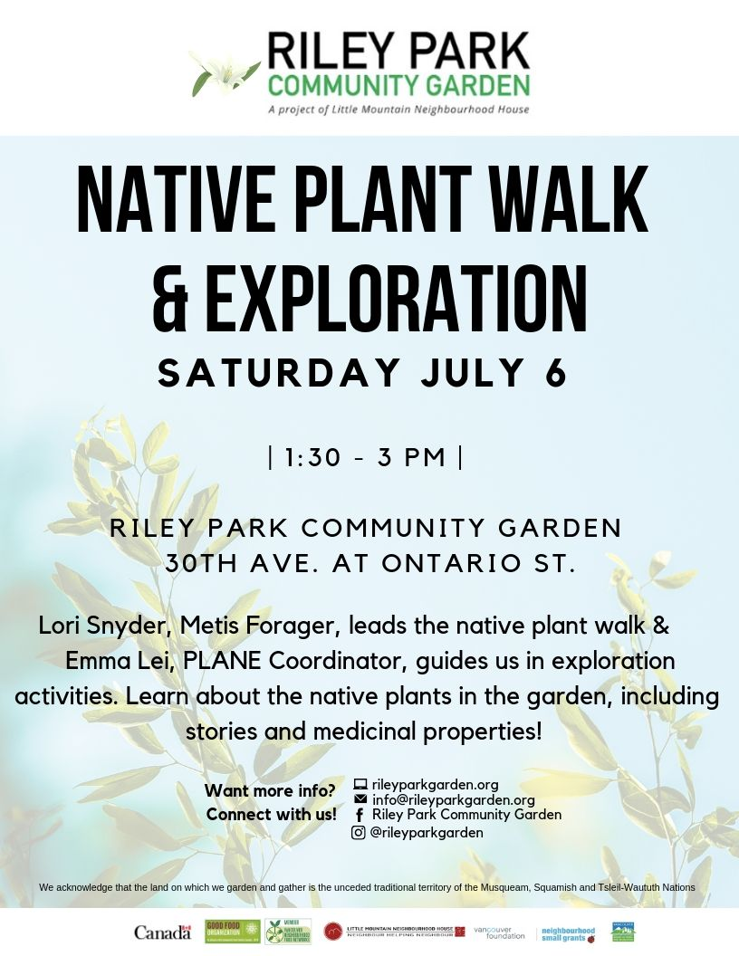 Native Plant walk & Exploration.jpg
