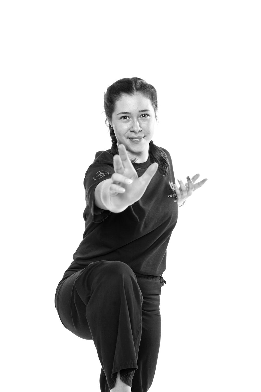 Pukulan Kung Fu
