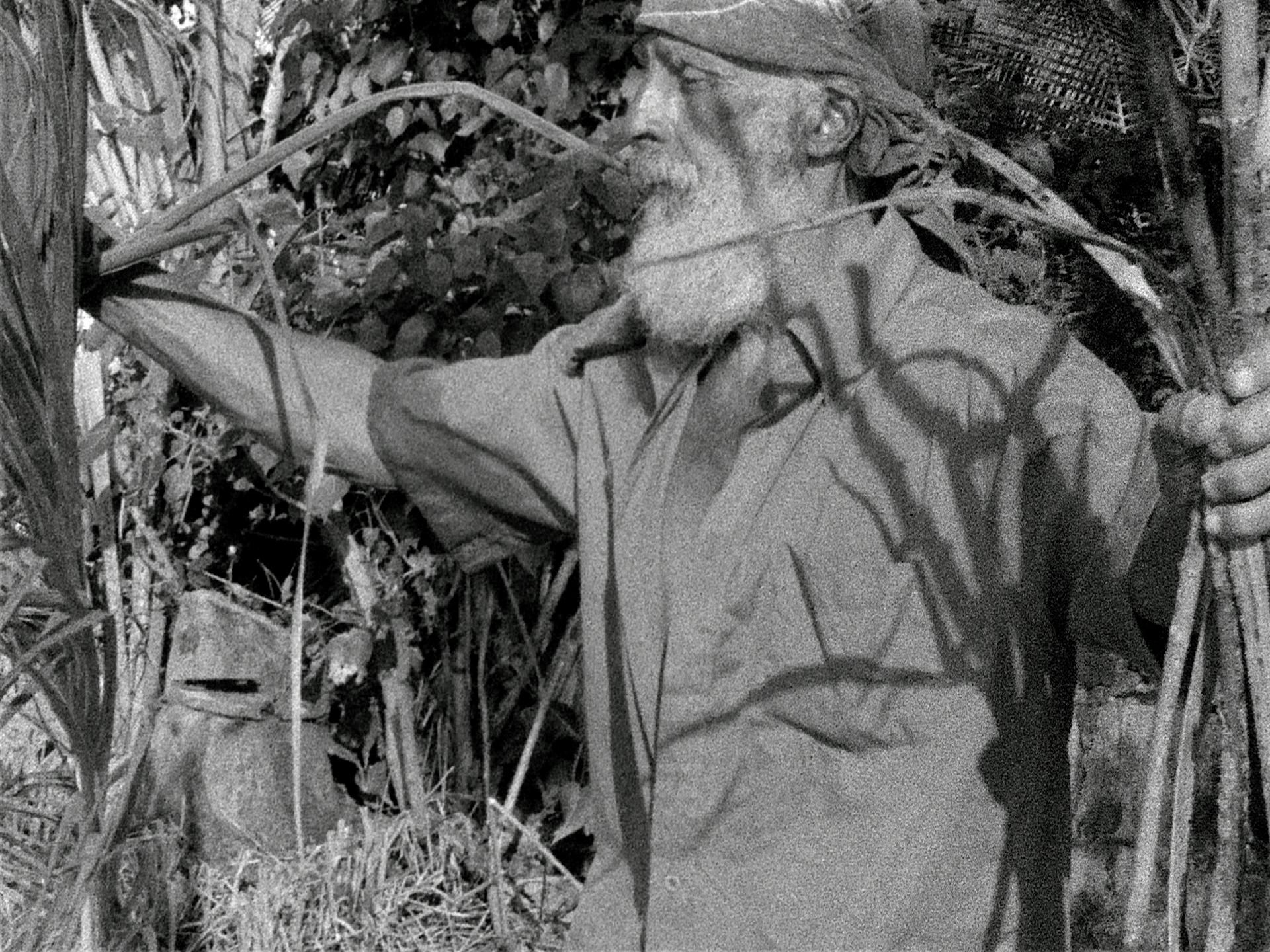 Beatriz Santiago Muñoz, Black Beach/Horse/Camp/The Dead/Forces, 2016 (still). 16mm film, sound, black and white; 8 min. Courtesy the artist and Galería Agustina Ferreyra