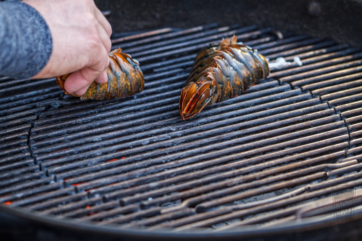 Losber Tails on Grill