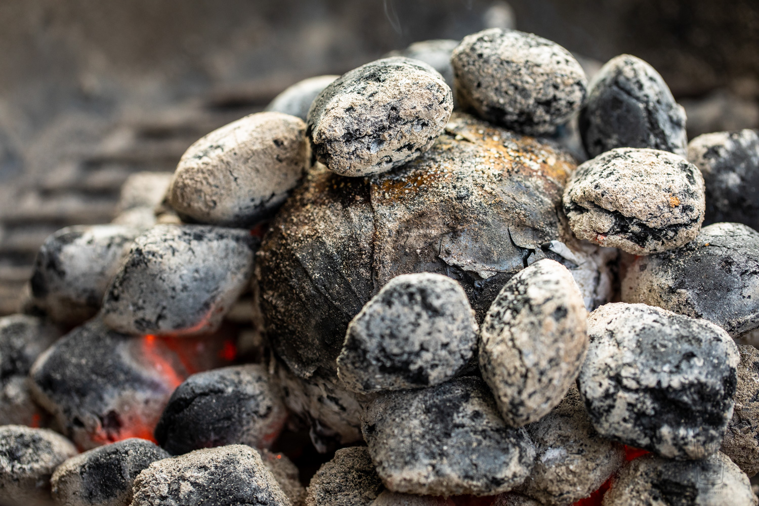 Grilled Cabbage in Charcoal