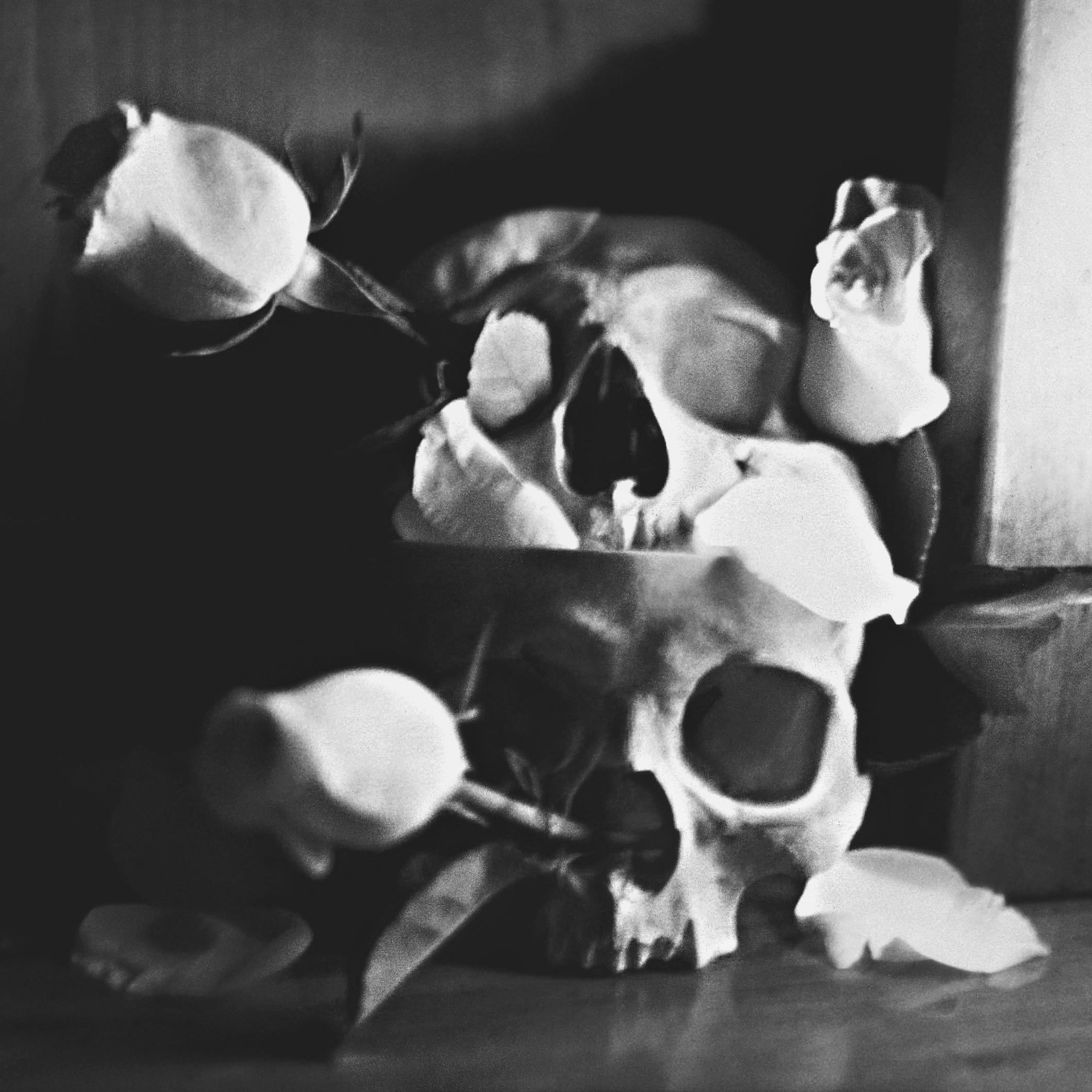 skullcolorassignment1.jpg