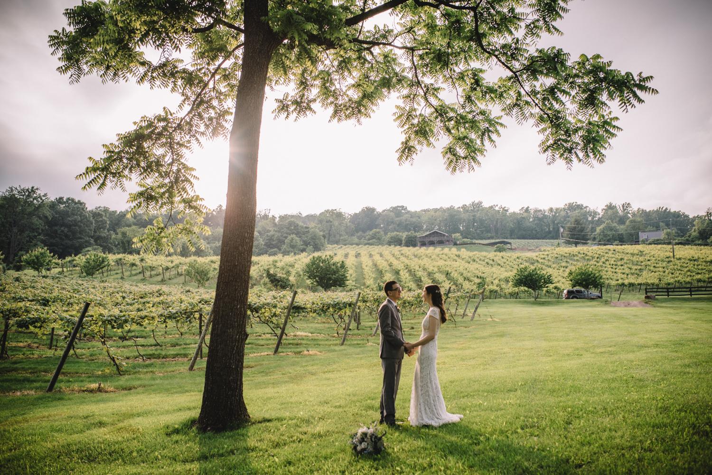 rachel and greg bluemont vineyard virginia wedding-88.jpg