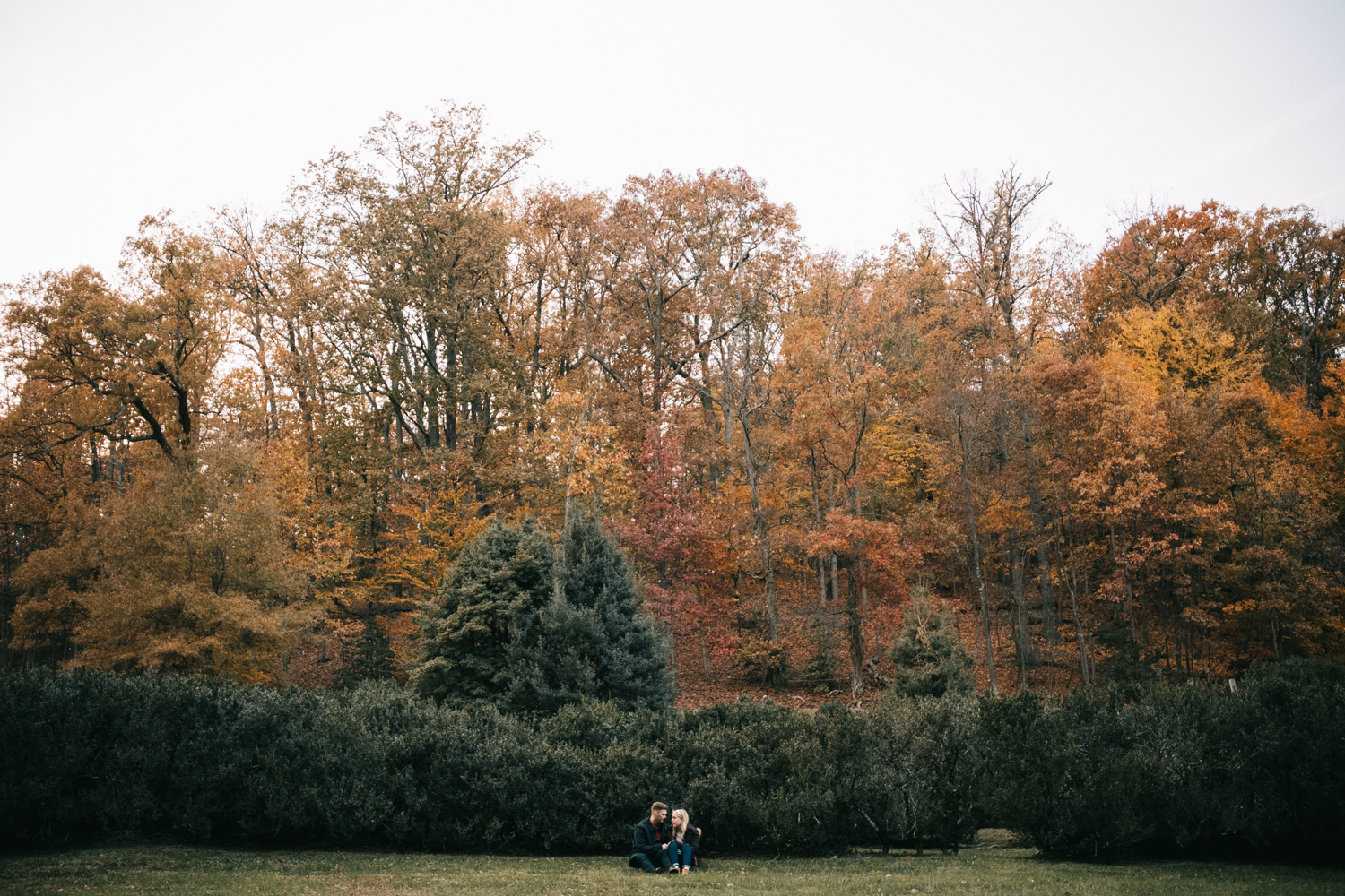fall engagement photos at morven park