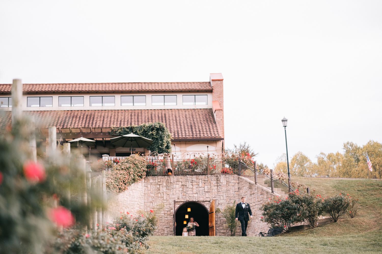potomac point winery wedding-23.jpg