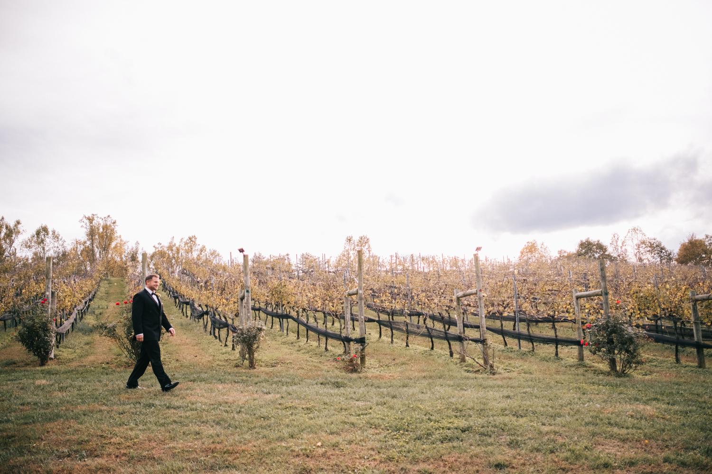 potomac point winery wedding-24.jpg