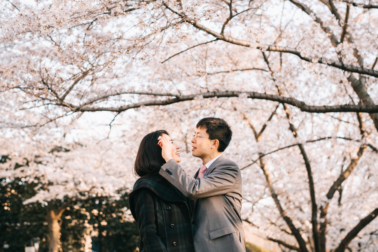 washington dc cherry blossoms engagement session-18.jpg