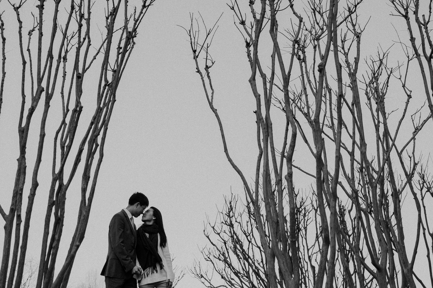 washington dc cherry blossoms engagement session-11.jpg