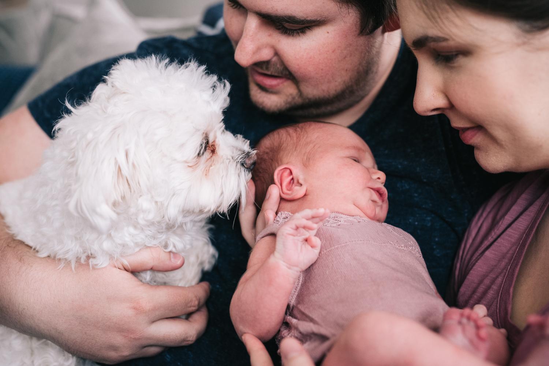 purcell family-7.jpg