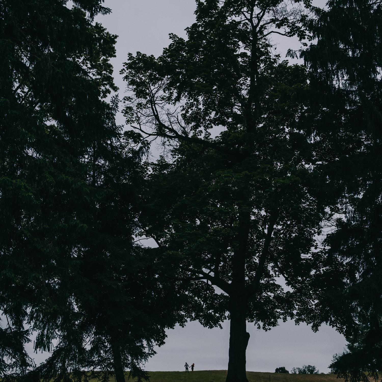 morven park leesburg va engagement session