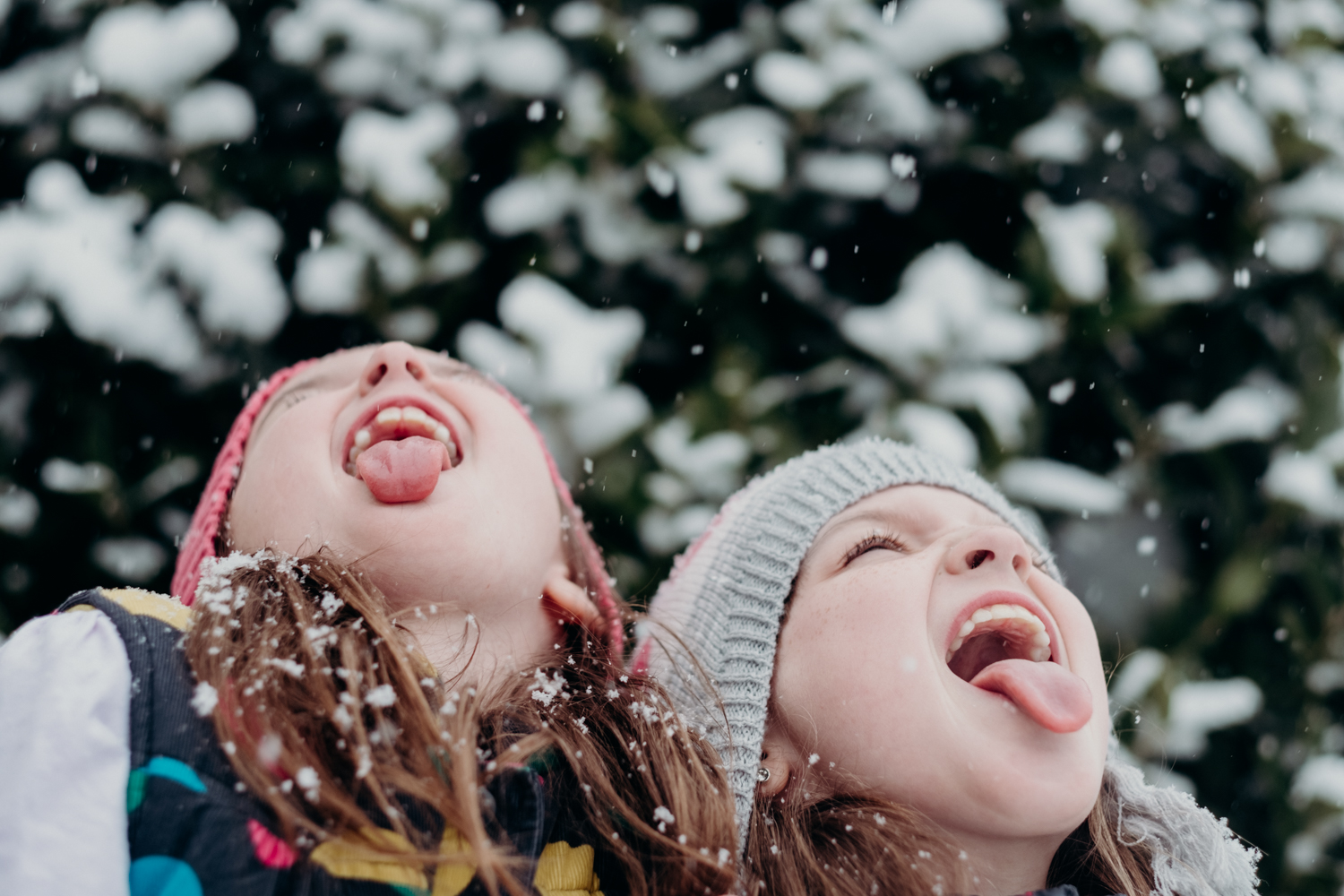 sisters and snow-13.jpg