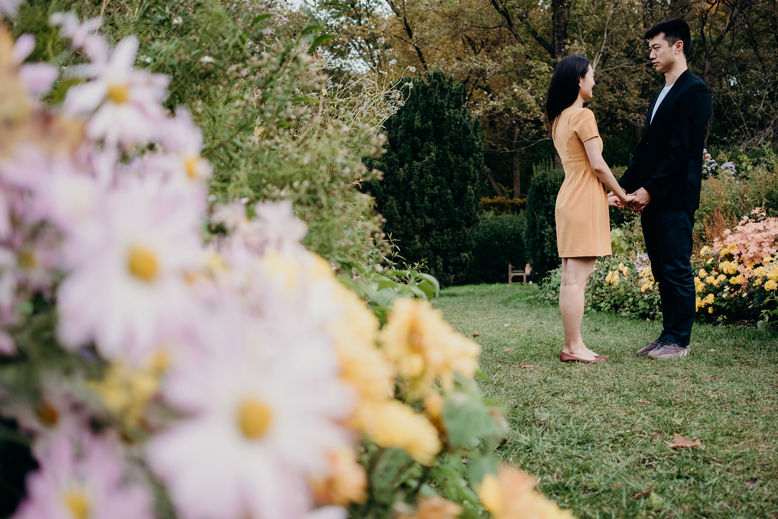 An engaged couple stands together by the daisy garden at Dumbarton Oaks.