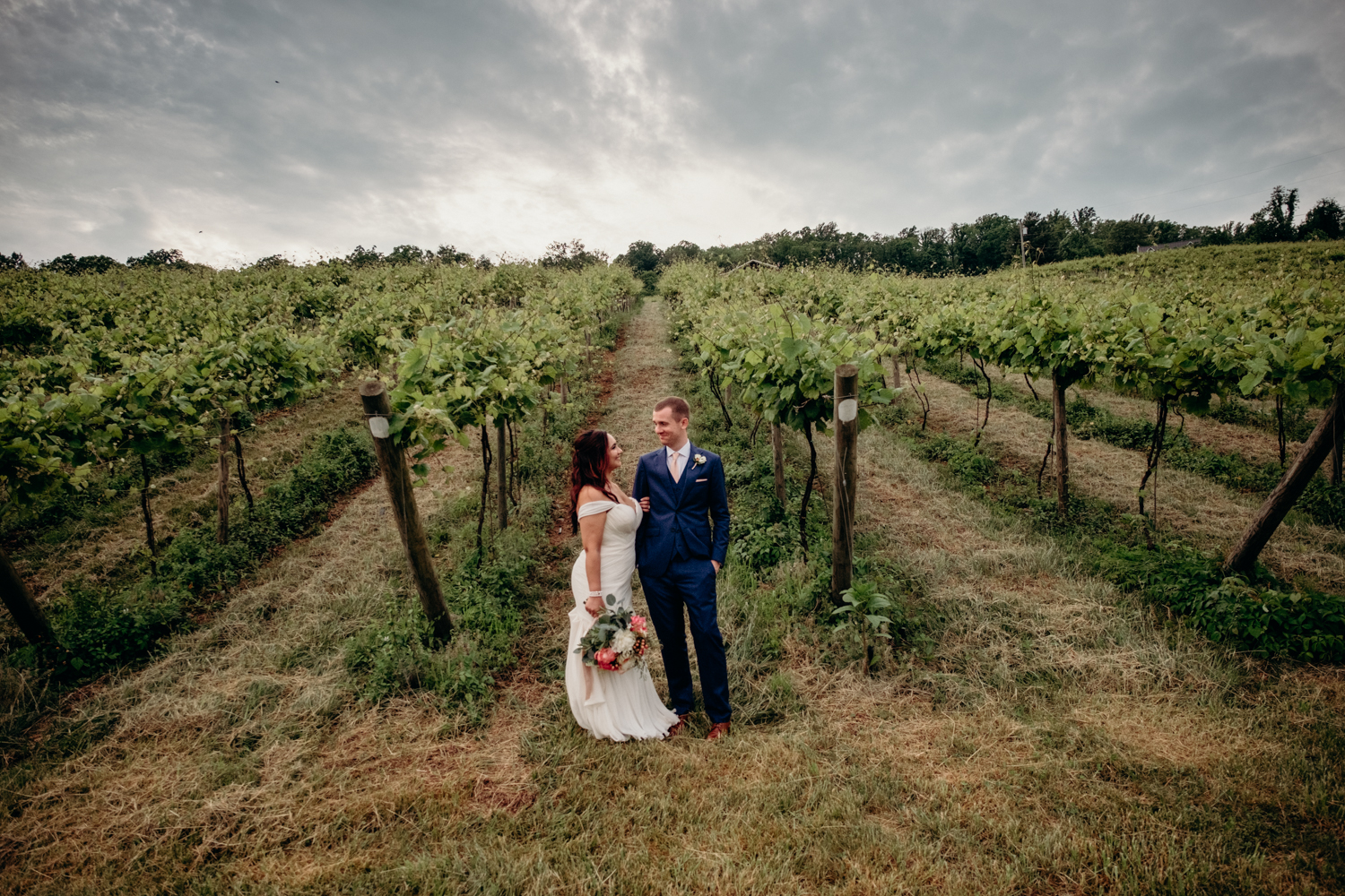 bluemont winery wedding couple in the vines in loudoun county