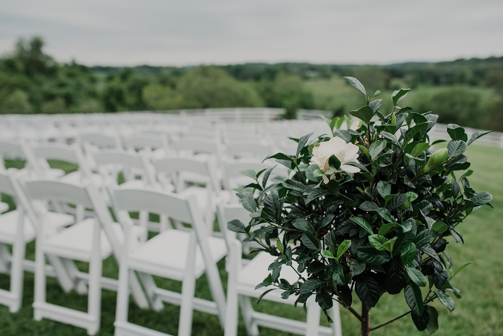 A short tree sits next to the chairs set up for an outdoor spring ceremony at Blue Hill Farm in Waterford, VA.