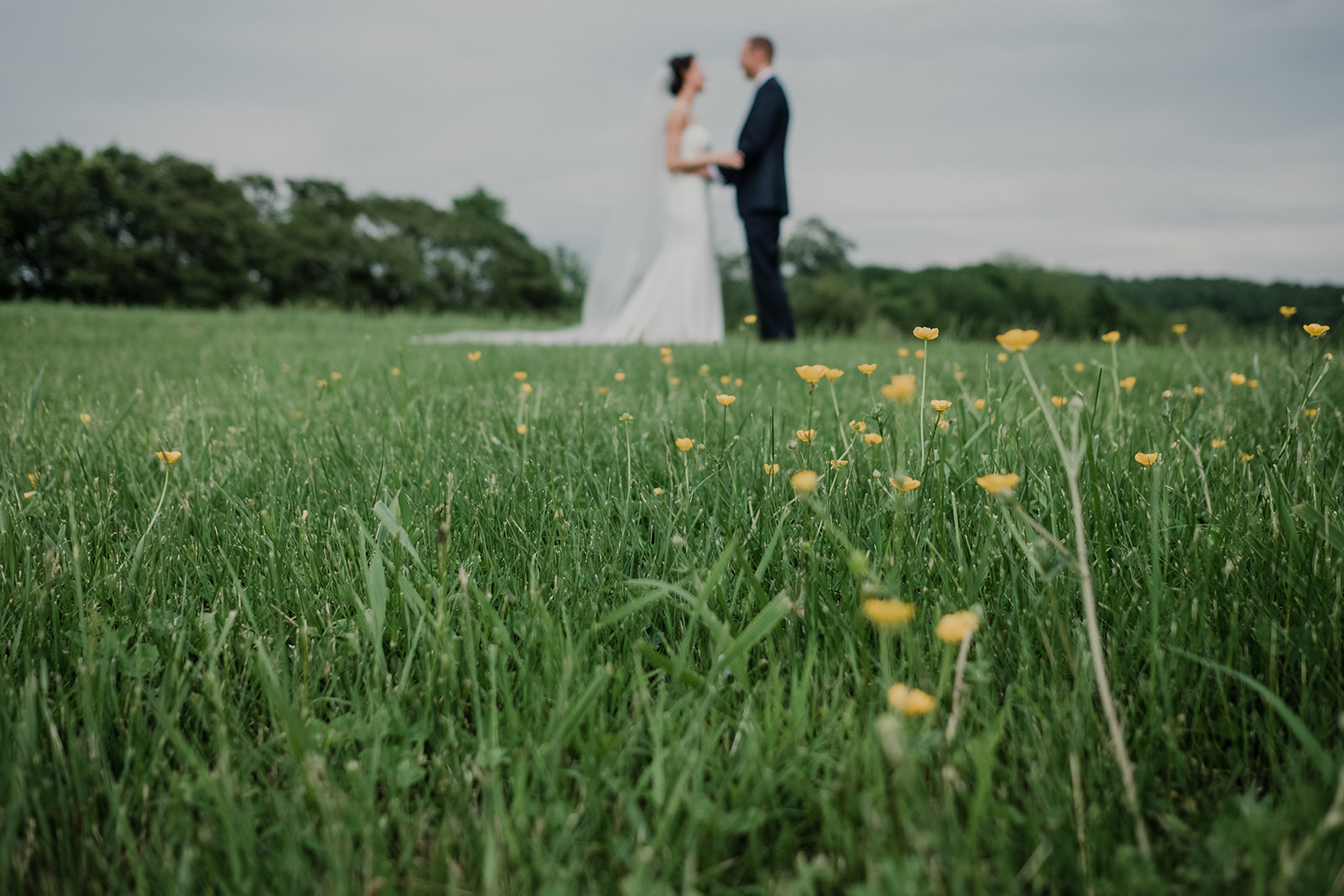 Little yellow buttercup flowers adorn the grassy field that the bride and groom are standing in during their first look before their outdoor wedding ceremony at Blue Hill Farm in Waterford, VA.