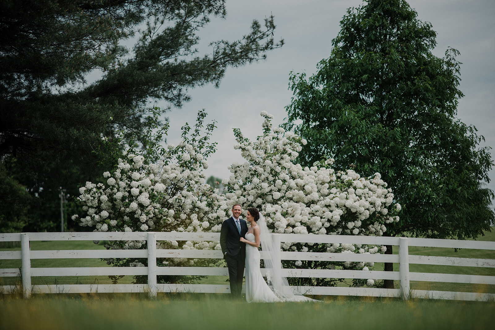 A bride and groom stand in front of a large flowering bush before their outdoor ceremony at Blue Hill Farm in Waterford, VA.